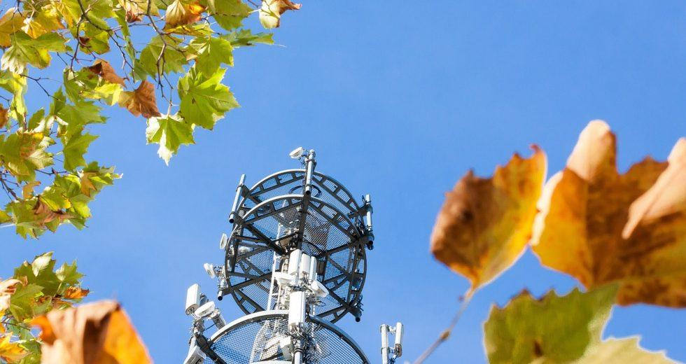 Netzausfall bei Vodafone: Das sollten Sie wissen